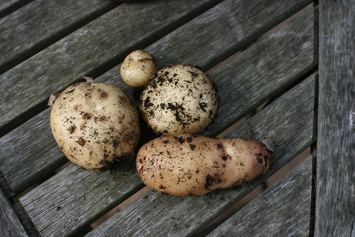 Potatoes to cheer me up