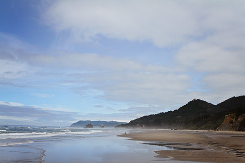 Oregon Coast 1149