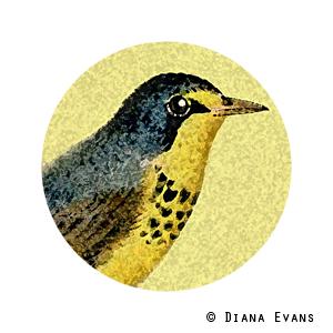 vintage bird2