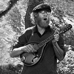 Forest Serenade (Ian Sane) Tags: street city portrait musician white man black college oregon forest portland beard ian photography university downtown state farmers market mandolin images instrument performer serenade sane stringed