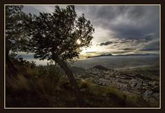 IMG_7897 Cumbre del sol(Mountains Bernia 07) (jaro-es) Tags: españa mountains sol nature canon mar spain meer natura bergen sonne spanien montañas spanelsko eos450 artistoftheyearlevel3 artistoftheyearlevel4 artistoftheyearlevel5 artistoftheyearlevel6
