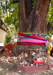 (seua_yai) Tags: thailand shrine asia southeastasia bangkok buddhist buddhism thai offering spirithouse silom silomroad