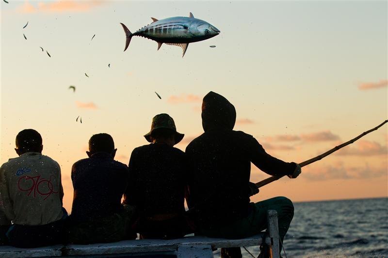 рыбалка атлантического океана видео