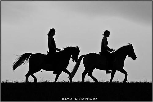 Pony horse riding, Bielefeld