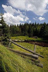 Fence (Katka S.) Tags: park wood sky cloud mountain mountains green nature grass creek forest stream meadow national valley spruce reservation umava lansdcape potok modrava roklansk