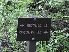 Trail fork. Straight for Crystal Lakes, Right for Crystal Peak. Crystal Peak explorations first today.