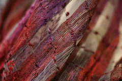 Scarf (Read2me) Tags: fabric textile red purple abstract thechallengefactory bigmomma flickrchallengewinner 3waychallengewinner friendlychallenges pregamewinner thumbsupwinner 2thumbsup gamewinner herowinner superherochallengewinner agcgwinner texture challengeyouwinner storybookwinner storybookbtd1st otr ttw perpetualchallengewinner 15challengeswinner challengeclubwinner