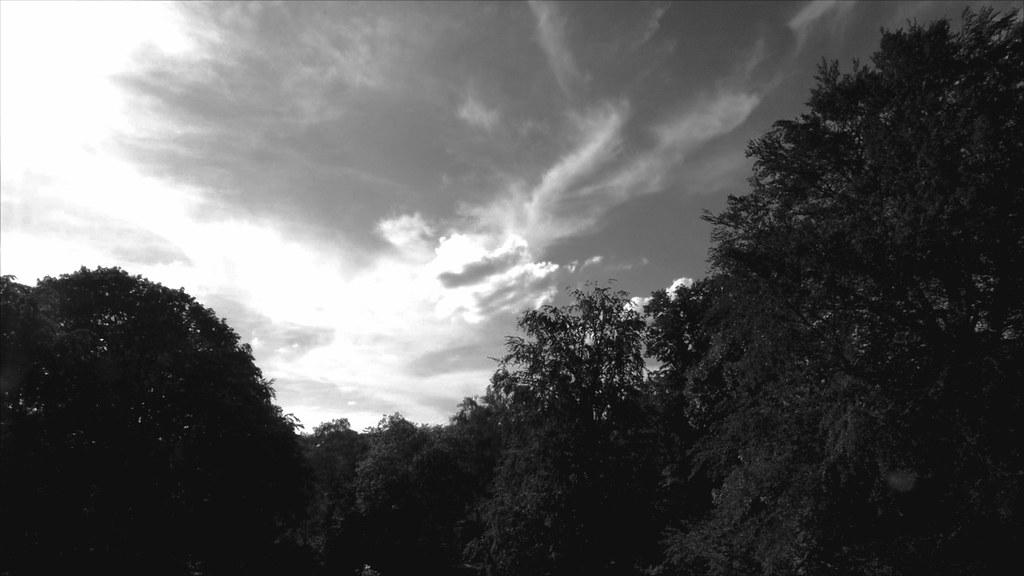 Clouds (218/365)