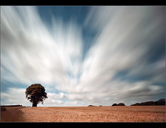 Before the harvest.... (Chrisconphoto) Tags: longexposure colour tree canon movement le balance drama crank merseyside weldingglass billinge eos400d