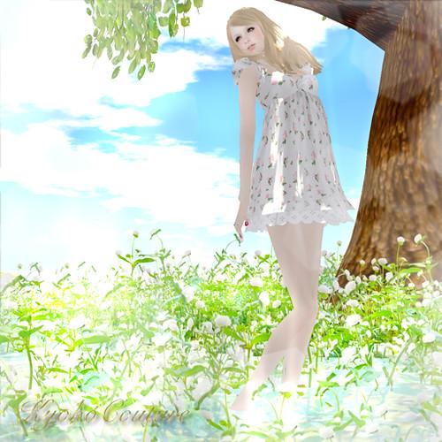 KCsummer2011_1