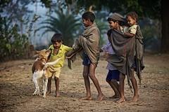 Desia Kondh tribe, Orissa, India (ingetje tadros) Tags: travel family people dog baby india smile kids fun happy community play brother joy group culture happiness games journey surprise remote orissa familiy bonding indigenous playfighting nationalgeographic wellbeing villagelife lettinggo realpeople remoteness dongriakondh tribalchildren desiakondh indigenoustribalphotos tribalfamily tribalbrothers desiakondhtribe ingetjetadros orissatribes tribalvillagelife