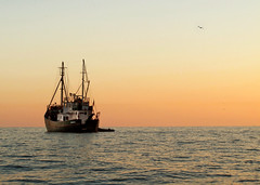 Thor (Giuseppe Suaria) Tags: sunset sea tramonto mare ship nave thor whaler baleniera