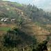 Terracos para a agricultura