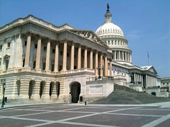 the very big capitol and bird on mans head dc (Wayne Leal) Tags: power capitol capitolbuilding supremepower