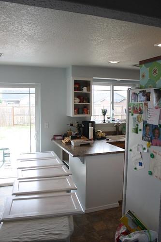 Kitchen Cabinet Roller Catch