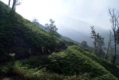 Path to Ijen (Merel-Martyn) Tags: indonesia ijen