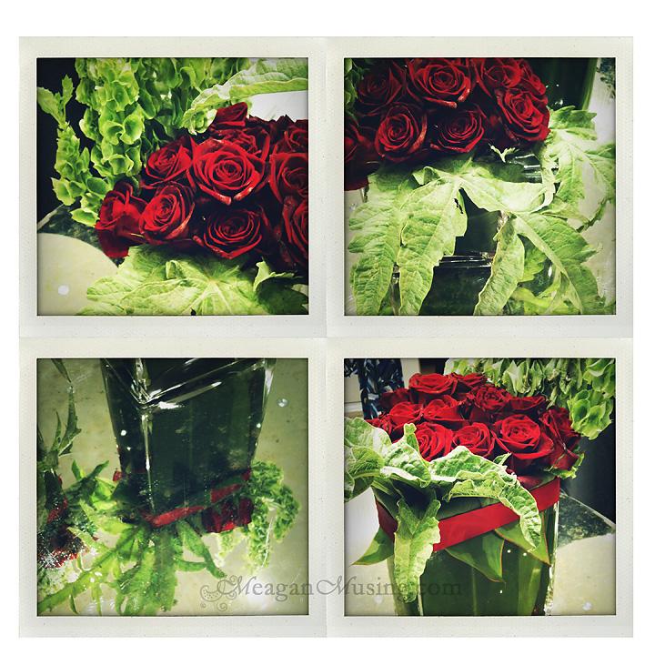 WEB_RosesQuad2