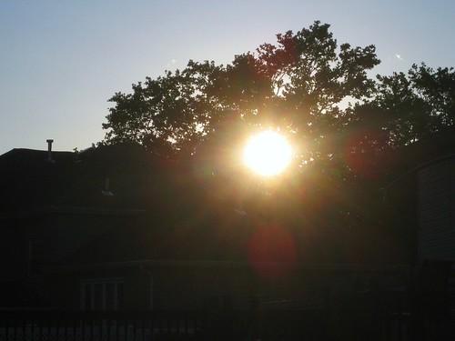 sunflare.