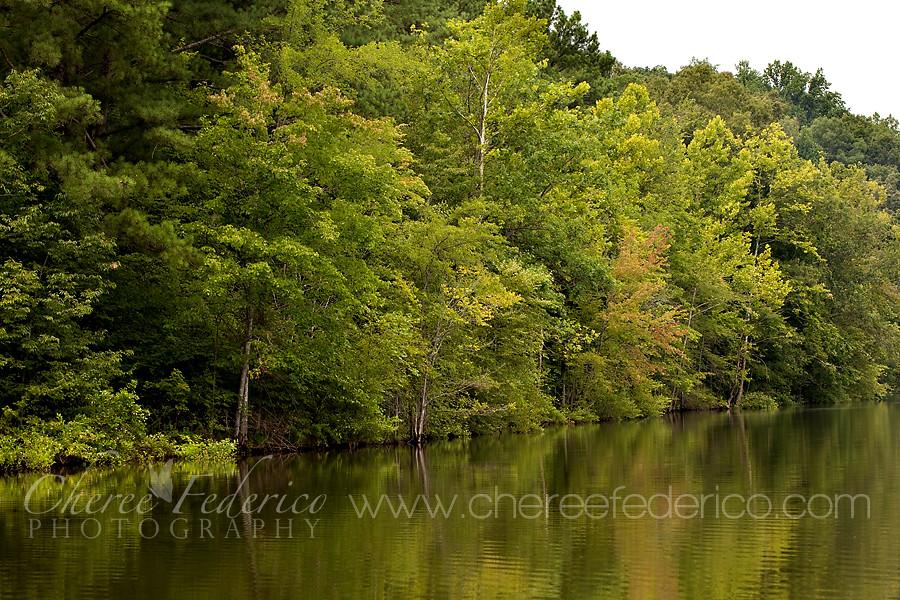 SH Lake Reflections