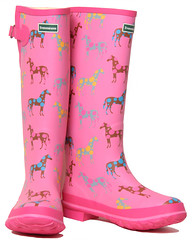 Pair of Horse Print Wellie Boots (summerfly30) Tags: wellingtonboots wellies wellingtons funkywellies wellieboots ladieswellies