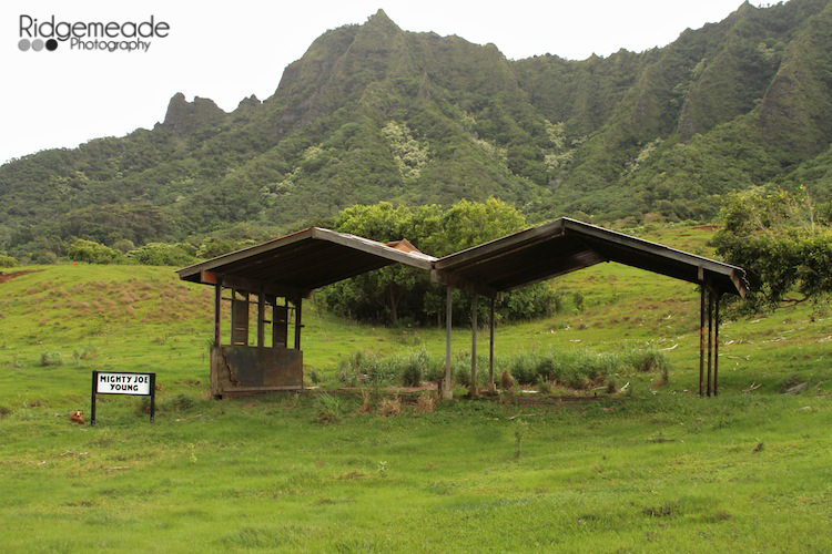 Kualoa Ranch #6