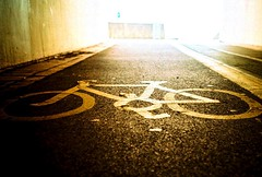 Bike route (fotobes) Tags: light texture bike bicycle tarmac sussex lomo lca xpro crossprocessed brighton crossprocess crossprocessing cyclepath lowdown lowperspective cycleroute bikeroute brightonmarina ratseye chrome100 chinscraper fotobes tunnelphilia