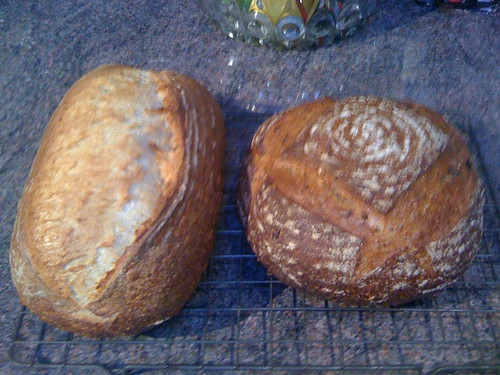 White sourdough and granary sourdough by flimbag
