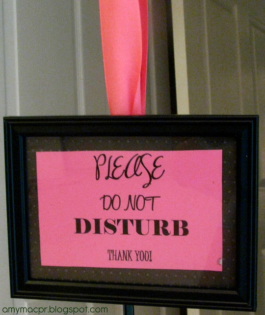 Please Do Not Disturb Sign Amy Mac