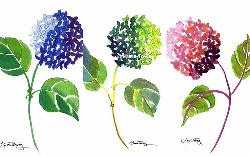 Hydrangea Watercolor Prints