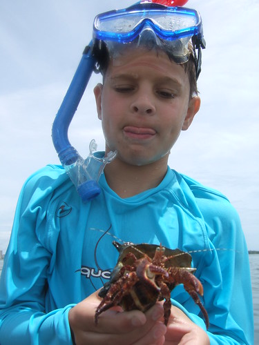 Dylan with hermit crab