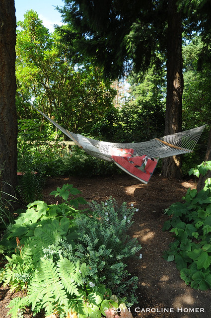 A hammock in a shady spot