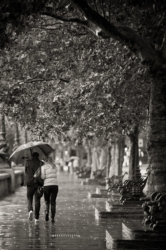 549/1000 - Embankment in the rain by Mark Carline
