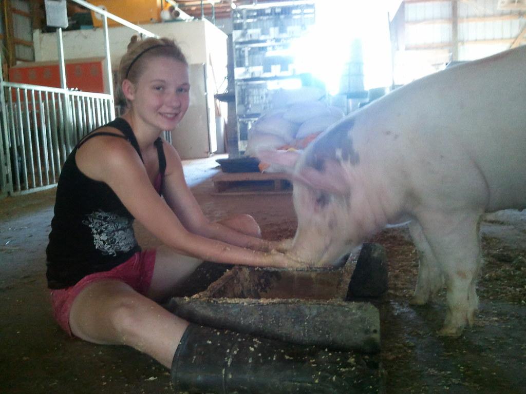 Alisha's FFA Pig,,,,,, Bullwinkle