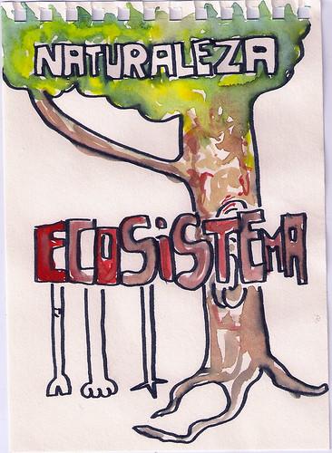 KITKRAK_KRAKECOSISTEMA_05