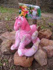 Cavalinho Rosa de Balano (Bruna Atelie B & F) Tags: portarecados portafoto cavalinhodebalano cavalorosa cavalinhotecido