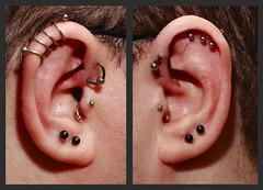 Ears, July 2011