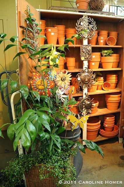 Sunny terracotta pots