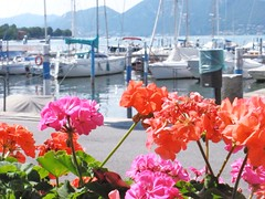 Colors for you! (fata_ci) Tags: lago barche fiori acqua lombardia iseo gerani