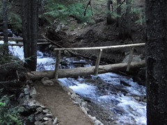 New log bridge over Crystal Creek. This wasn't here last year.