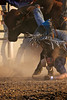 (Robert Howell _) Tags: montana bulls pbr livingston bucking professionalbullriders flintrasmussen roberthowell worldclassentertainer roberthowellphotography rah5206