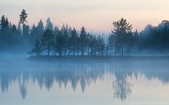 Foggy Sunset (Heikki Salmi) Tags: blue trees sunset mist lake cold reflection tree water misty fog landscape still calm lapland nikkor lappi nikon80200 nikond300s ginordic1