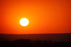 Monster´s eye (Edi Eco) Tags: sunset brazil sun sol nature beautiful brasil canon rebel zoom natureza bonito feira sp paulo aviao arvore sao por broa flyin xsi detalhes itirapina aviacao 55250mm