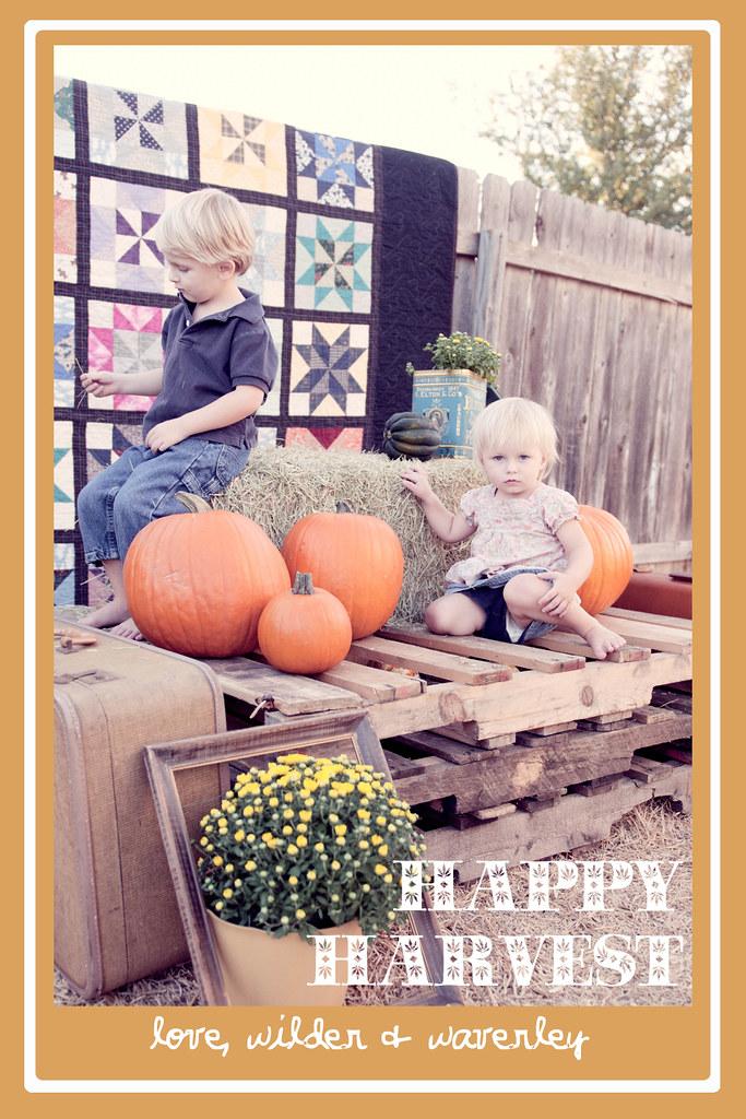 Happy Harvest7