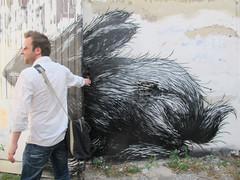 photoset: Street Art: ROA (Westbahnstrasse/Bandgasse Wien)