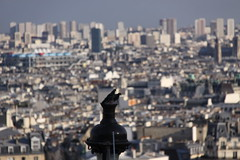 View from the Sacr-Cur - Montmartre, Paris (ChrisGoldNY) Tags: city travel urban paris france french europa europe european forsale pigeons eu montmartre viajes views posters francia vacations bookcovers albumcovers sacrcur parisien chrisgoldny chrisgoldberg chrisgold chrisgoldphotos