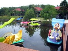 Duck boats @ Don Hoi Lot | סירות-ברווז בדון הוי לוט