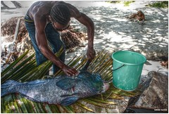 Seychelles - After Fishing (Lucio Sassi Photography travel) Tags: fisherman praslin seychelle seicelle