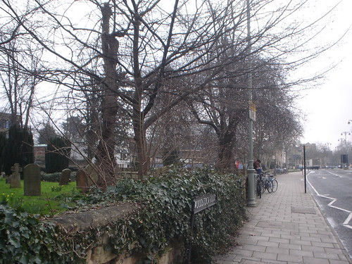 Oxford (13)