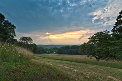 Sun Rays over Valley Forge Park (CrapulePHL) Tags: flowers trees sunset sky sun grass clouds canon raw pennsylvania iso f16 100 rays usm efs 1022mm hdr 4s 10mm valleyforgepark f3545 110s 140s treesdiestandingup