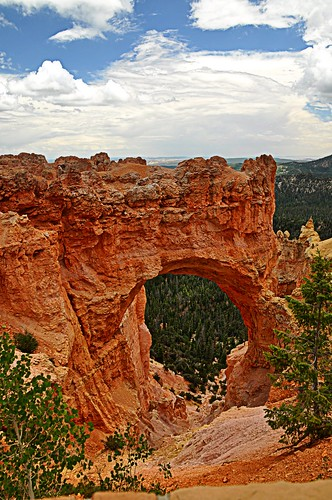 07/12/11 Bryce Canyon by roswellsgirl